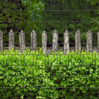 Holzzaun & Buxus - Bedruckter Sichtschutz Streifen Rolle Doppelstab Zaun
